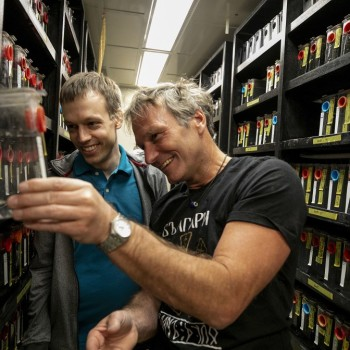 Martin Haesemeyer, on left, and Florian Engerts are the authors of an upcoming study that explores the neural circuits that are responsible for managing how zebrafish respond to temperature changes in their environment. Rose Lincoln/Harvard Staff Photographer